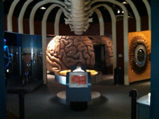 Where in Houston? The Health Museum!