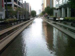 Tracks at Water1