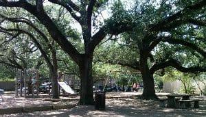 Fleming Park