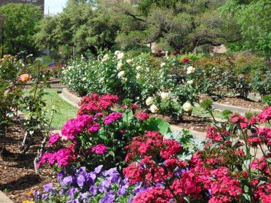 where in houston the garden center at hermann park - Houston Garden