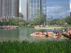 Discovery Green Kayaks