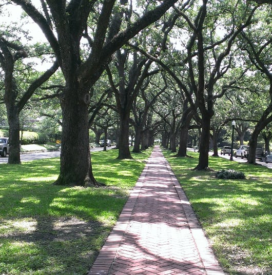 Houston Oaks: Where In Houston? Boulevard Oaks