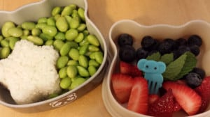 Fruit and Mint Lunch Box
