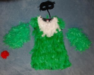 DIY Hummingbird Costume