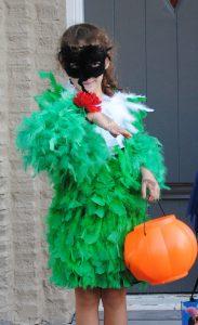 Hummingbird Costume Close Up