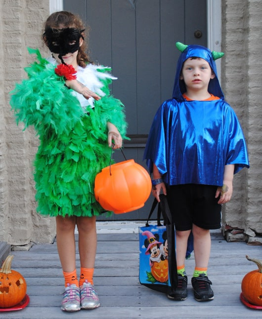 DIY Hummingbird Costume! Great Kids Halloween Costume Made from Boas Feathers Pipe Cleaners and Glue!  sc 1 st  Big Kid Small City & DIY Hummingbird Costume! Great Kids Halloween Costume Made from Boas ...
