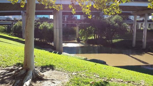 Bayou at Sabine Street Bridge