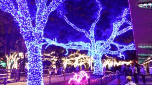 Houston Zoo Lights 2013