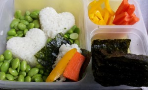 Make Your Own Sushi Lunch Box