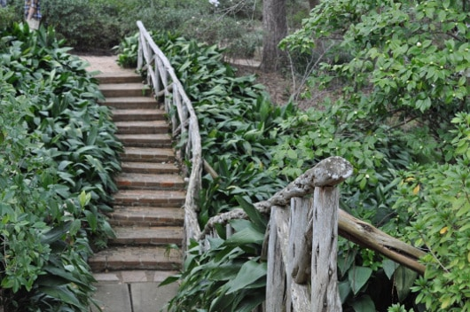 Steps at Bayou Bend Houston