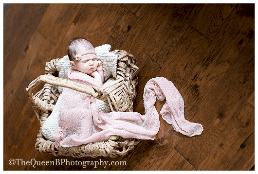 Houston Newborn Photographer - The Queen B Photography (2)