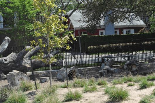Logs at Wilson Spark Park