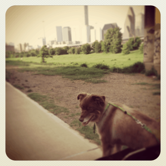 NOLA and Downtown Houston