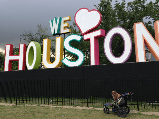 NOLA and We Love Houston Sign