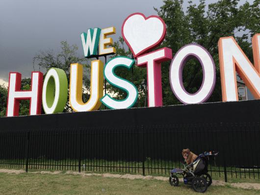 NOLA and We Love Houston Sign