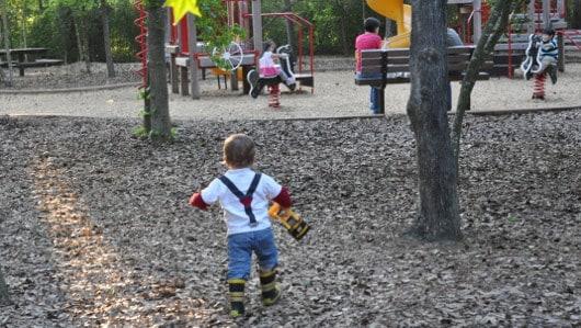 CyChamp Playground