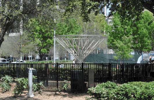 Discovery Green Mist Tree
