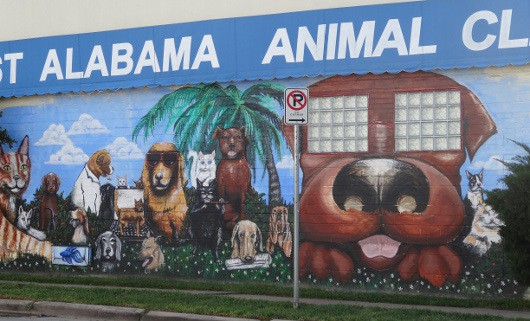 West Alabama Animal Clinic