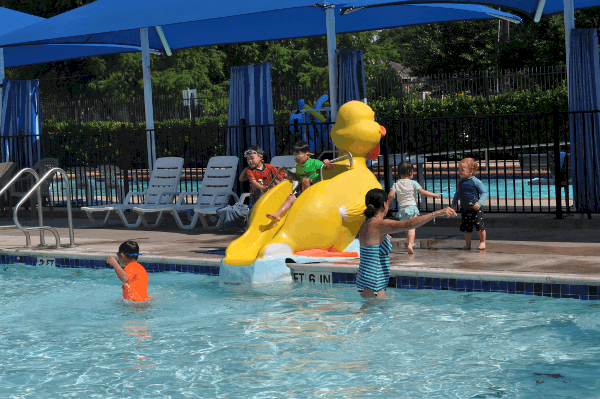 Duck Slide at Evergreen Park Pool