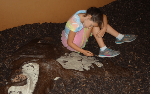 Digging for Fossels at Houston Museum of Natural Science Sugar Land