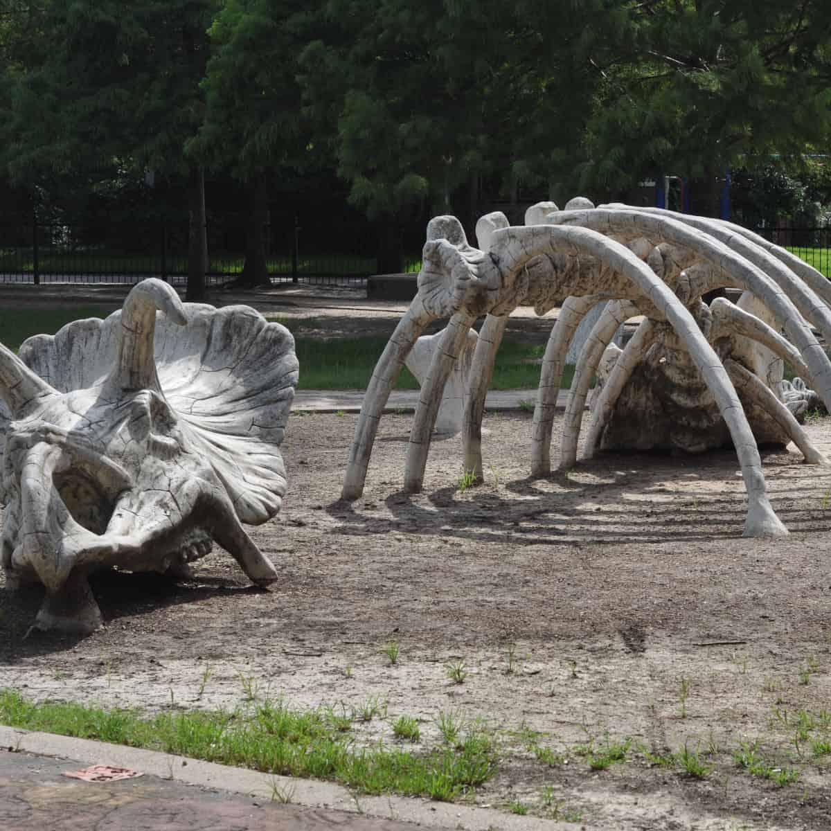 Dinosaur Bones at Travis Spark Park