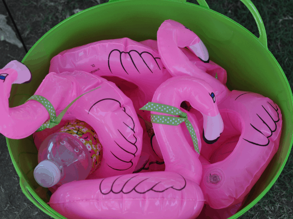 Flamingo Koozies
