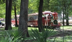 Hermann Park Train in Trees Close