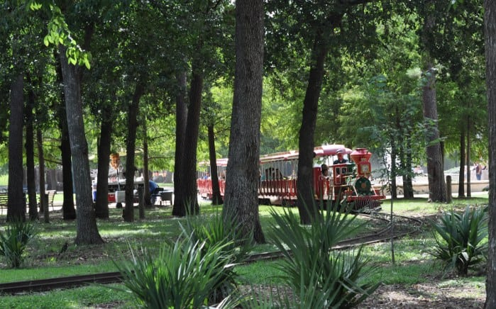 Hermann Park Train in the Trees