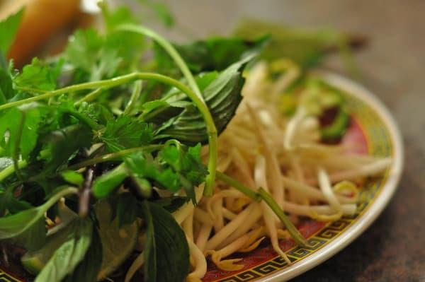 Pho Saigon Noodles