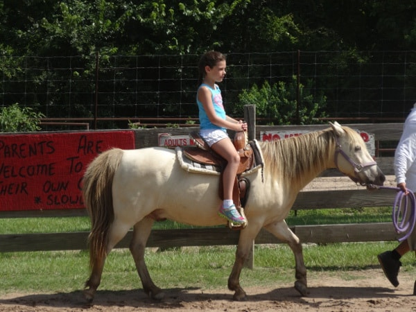 Riding Horses at Old Mac Donalds Farm