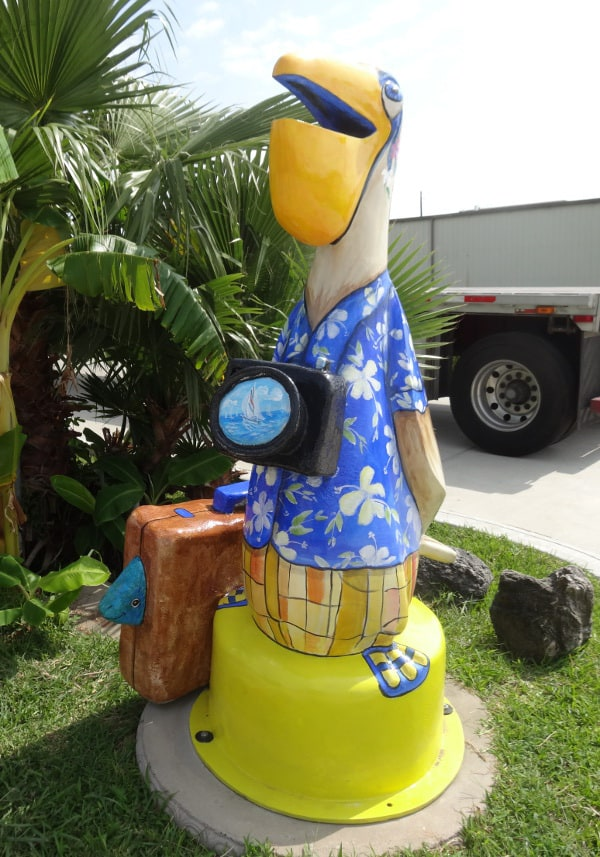 Tourist Seabrook Pelican