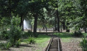 Train Tracks at Hermann Park