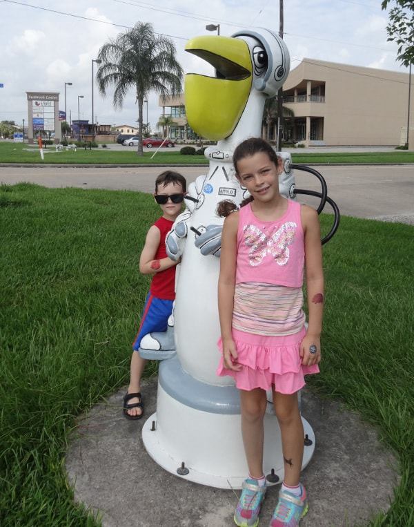 Wally the Astronaut Seabrook Pelican