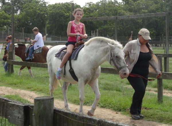 Pony Rides at Bayou Wildlife Park