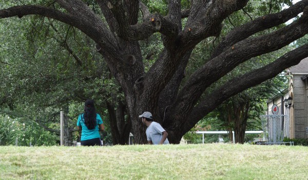 Roberts Spark Park Frisbee Golf