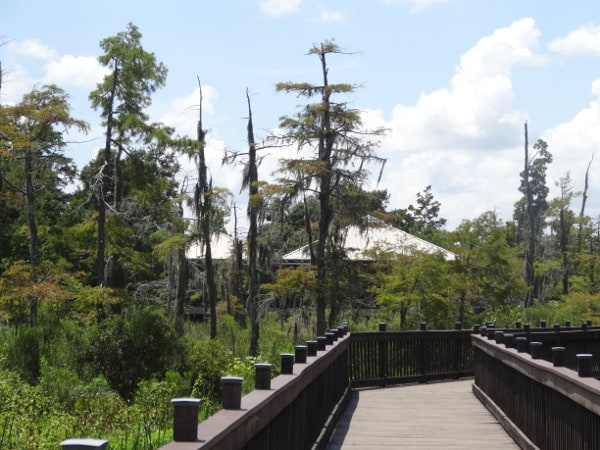 Texas Travel Information Center Boardwalk