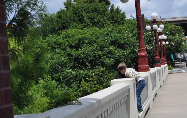 Preston Street Bridge Downtown Houston