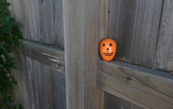 Halloween Egg on Fence