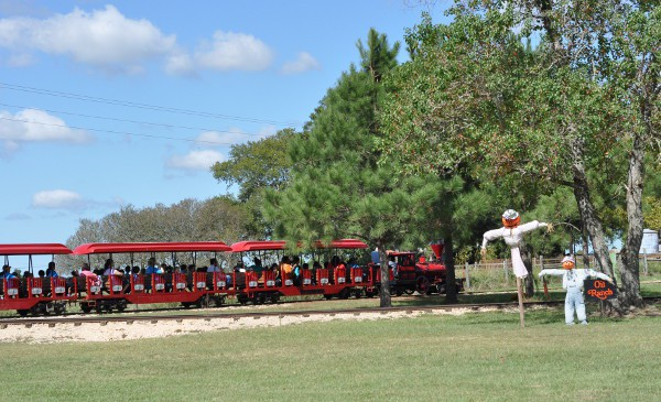 Oil Ranch Train