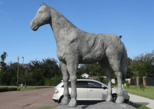 WIH Horse