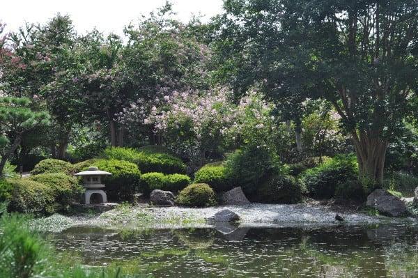 Hermann Park Japanese Garden 6