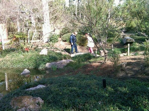Hermann Park Japanese Garden Small Bridge