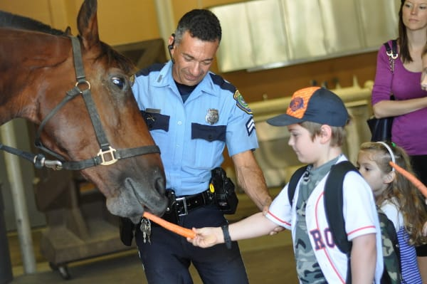 Mounted Patrol Feeding Horses