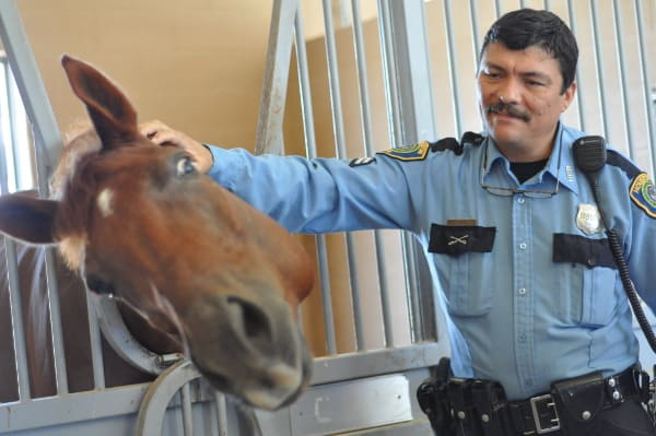 Mounted Patrol Police Officer
