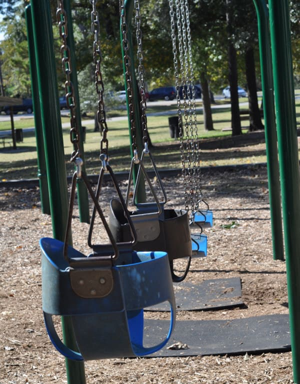 Don and Sylvia Collins Park Swings