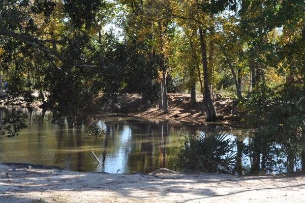 Meyer Park Creek
