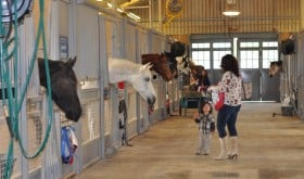 As Seen on Mommy Nearest: 20 Free Things to Do with Kids in Houston