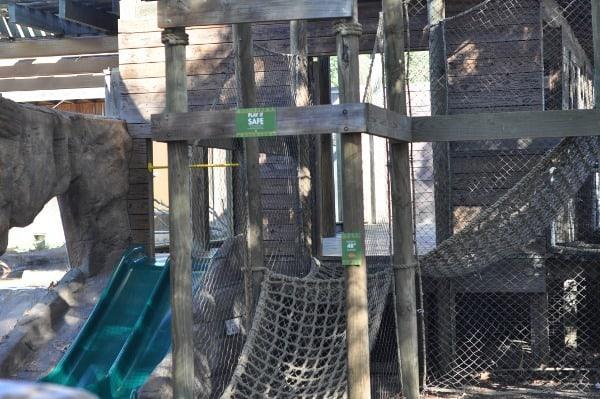 Otter Ropes at Houston Zoo