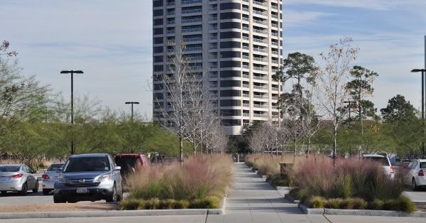 Hermann Park Centennial Garden Parking Lot