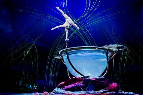 Cirque Du Soleil Water Bowl CWP_155
